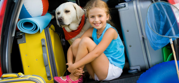 5 Top Tips On Dog Friendly Camping